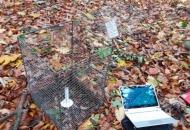 2017-11 Microclimate monitoring České Středohoří