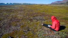 Monitoring of natural vegetation